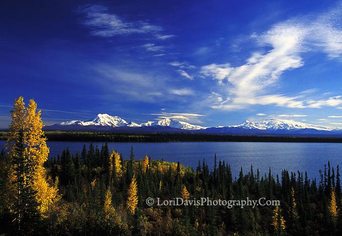 #L23 Autumn at the Wrangell Mountains, Alaska