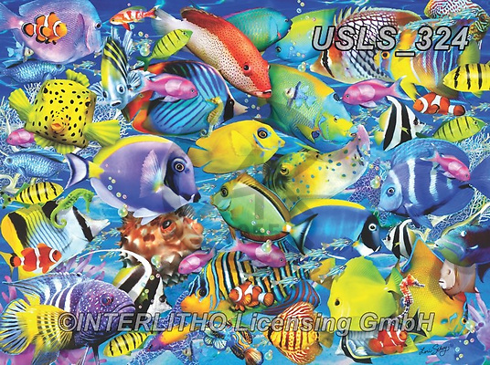 Lori, REALISTIC ANIMALS, REALISTISCHE TIERE, ANIMALES REALISTICOS, zeich, paintings+++++Tropical Traffic_72_Ravensburger,USLS324,#a#, EVERYDAY ,puzzle,puzzles