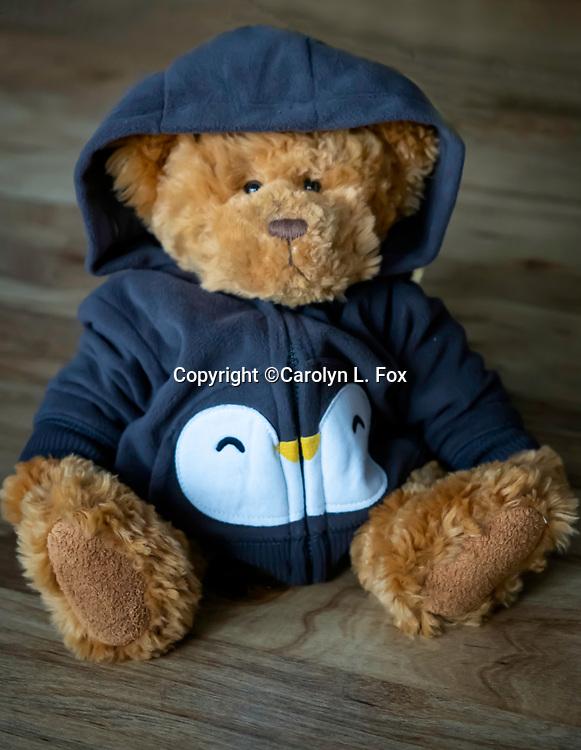 Cookie bear wears a hoodie.
