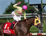 July 12, 2014: Belle Gallantey, ridden by Jose Ortiz, wins the Delaware Handicap on Delaware Handicap Day at Delaware Park in Stanton, Delaware. Scott Serio/ESW/CSM