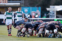 Nottingham Rugby FC feed the scrum during the Championship Cup Quarter Final match between Ealing Trailfinders and Nottingham Rugby at Castle Bar , West Ealing , England  on 2 February 2019. Photo by Carlton Myrie / PRiME Media Images.