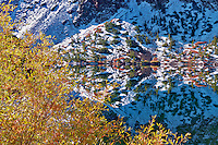 Ellery Lake with fall colored willows and reflection after snowfall. Inyo National Forest, California