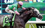 ELMONT, NY - JUNE 11: Pure Sensation, ridden by Jose Ortiz, wins the Jaipur Invitational Stakes on Belmont Stakes Day before the 148th Belmont Stakes on June 11, 2016 in Elmont, New York. (Photo by Dan Heary/Eclipse Sportswire/Getty Images)