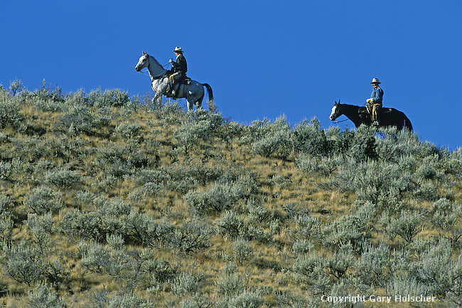 Cowboys on horses on skyline. Ponderosa Ranch, Seneca, OR.