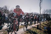 Gregory Rast (SUI/Trek-Segafredo) avoiding the Varent cobbles<br /> <br /> 70th Kuurne-Brussel-Kuurne 2018<br /> Kuurne › Kuurne: 200km (BELGIUM)