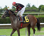 10 July 2010: Cool Vixen and Jockey Elvis Trujillo after the J J'sdream Stakes at Calder Race Course in Miami Gardens, FL.