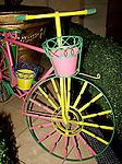 Bicycle, Elements, Las Vegas, Nevada