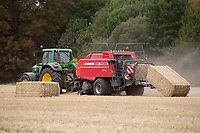 11.9.2020 Contractors baling Spring Barley straw <br /> ©Tim Scrivener Photographer 07850 303986<br />      ....Covering Agriculture In The UK.