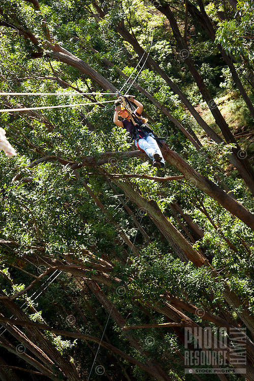 Woman Zip-lining through the air and rainforest with Kohala Ziplining in North Kohala on the Big Island.