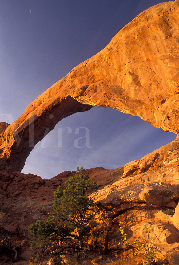 AJ3849, Arches, natural stone arch, Arches National Park, Utah, Crescent moon over South Window Arch a natural rock formation in Arches Nat'l Park in the state of Utah.