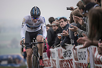 fresh European Champion Toon Aerts (BEL/Telenet-Fidea) racing in his Euro-jersey for the very first time<br /> <br /> 25th Koppenbergcross 2016