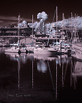 Harbor with Palms (Infrared) ©2019 James D Peterson.  Here's a dreamy look across the channel at the marina with docked boats in Santa Barbara Harbor.