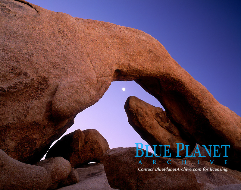 moon and Arch Rock, at dawn, Joshua Tree National Park, California, USA