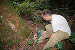 Chris Tilton Releasing Mountain Brushtail Possum