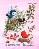 GIORDANO, CHRISTMAS ANIMALS, WEIHNACHTEN TIERE, NAVIDAD ANIMALES, paintings+++++,USGI1987,#XA#