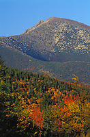 Fall Foliage below Mount Katahdin, in Baxter State Park, Maine.