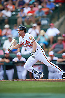 Baltimore Orioles Logan Schafer (28) at bat during a Spring Training exhibition game against the Dominican Republic on March 7, 2017 at Ed Smith Stadium in Sarasota, Florida.  Baltimore defeated the Dominican Republic 5-4.  (Mike Janes/Four Seam Images)