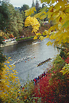 Seattle; Rowing, Head of the Lake, rowing regatta, Autumn, Washington State; Pacific Northwest; Lake Washington Ship Canal, Montlake Cut, Lake Washington Rowing Club,.