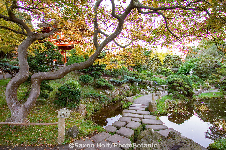 Japanese Tea Garden, Golden Gate Park, San Francisco. Stone cross bridge  by Temple Gate.