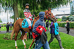 Ethical Funds(9) with Jockey Emile Ramsammy aboard before the Summer Stakes at Woodbine Race Course in Toronto, Canada on September 13, 2014 with Jockey Patrick Husbands aboard.