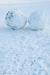 Snowballs on Wimbledon Common winter snow London 2010.