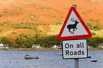 Schottland, Isle of Arran, Meer, Kueste, Dorf, Haeuser, Gebaeude, Warnschild, Warnhinweis, Hinweisschild, Verkehrschild, Boot, Wasser, niemand, Europa, Grossbritannien, Unitary Authority North Ayrshire, Firth of Clyde, Kilbrennan-Sund, Irische See, Reise, Travel, 2009<br /> <br /> Engl.: Europe, Great Britain, Scotland, Unitary Authority North Ayrshire, Firth of Clyde, Kilbrennan-Sund, Isle of Arran, sea, coast, village, houses, sign, boat, water, 2009