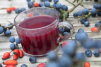 Schlehen-Hagebutten-Punsch, Punsch, Schlehenpunsch, glogg, punch, Schlehenfrüchte, Schlehe, Schlehen, Schwarzdorn, Prunus spinosa, Blackthorn, Sloe, fruit, Epine noire, Prunellier. Hagebutten-Ernte, Hunds-Rose, Hundsrose, Heckenrose, Rose, Wildrose, Hagebutte, Hagebutten, Rosa canina, Common Briar, Dog Rose, rose hip, rose hips, hip, hips, wild brier, Eglantier commun, Rosier des chiens