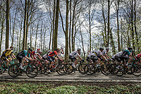 Peloton with World Champion Peter Sagan (SVK/Bora Hansgrohe) in the forest of the Schweiberg. <br /> <br /> 53th Amstel Gold Race (1.UWT)<br /> 1 Day Race: Maastricht > Berg en Terblijt (263km)