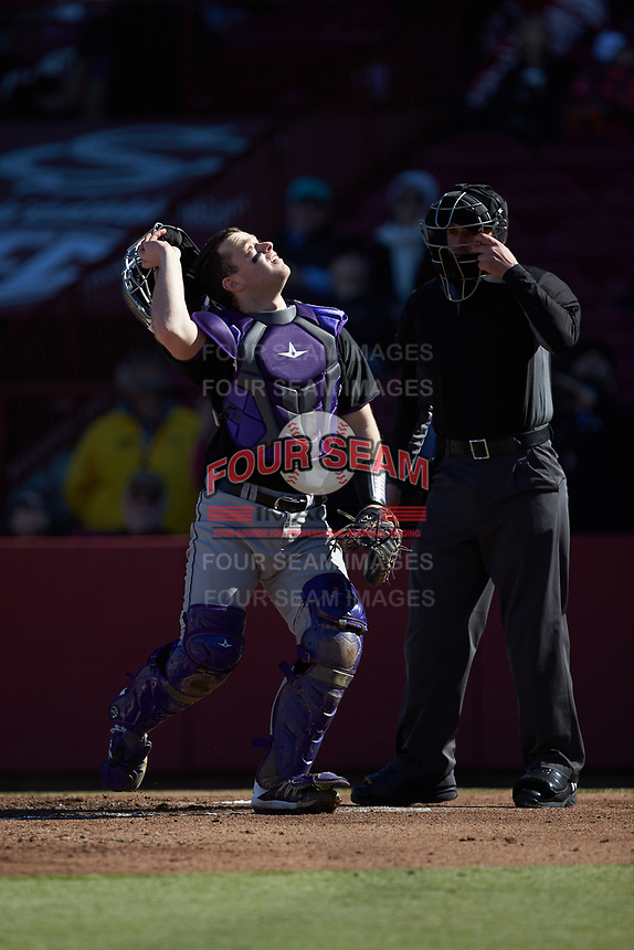 Holy Cross Crusaders catcher Riley Livingston (23) tracks a pop fly as home plate umpire Anthony Perez looks on during the game against the South Carolina Gamecocks at Founders Park on February 15, 2020 in Columbia, South Carolina. The Gamecocks defeated the Crusaders 9-4.  (Brian Westerholt/Four Seam Images)