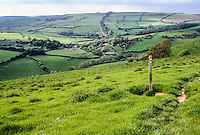 England, Offa's Dyke Footpath north of Knighton.  The trail follows the tree line over the far hill in the distance.  Shropshire.