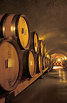 Pinot Noir wine in French Oak barrels in caves at Archery Summit Winery;  Yamhill County, Willamette Valley, Oregon.