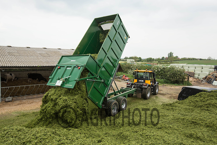 Contractors A & R Cramphorn carting silage with a JCB Fastrac and Bailey Trailer<br /> Picture Tim Scrivener 07850 303986