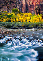 The Pulpit and fall color with the Virgin River at the Temple of Sinawava. Zion National Park, Utah