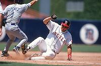 Tim Salmon of the California Angels at Anaheim Stadium in Anaheim,California during the 1996 season. (Larry Goren/Four Seam Images)