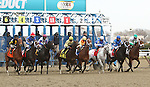 November 29, 2014:  Snobell with Luis Saez wins the 65th running of the Grade III Comely Stakes for 3-year olds fillies, going 1 1/8 mile at Aqueduct Racetrack. Trainer: Thomas Albertrani . Owner: Godolphin Stables . Sue Kawczynski/ESW/CSM