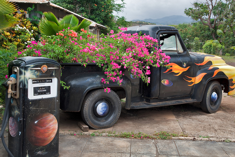 Old pickup truck with bougainvillea flowers in bed. Kauai, Hawaii