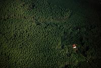Les Landes au naturel / The Landes, uncovered