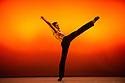 English National Ballet, Emerging Dancer 2014, Lyceum