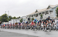 The peloton passes through Greytown during stage four of the NZ Cycle Classic UCI Oceania Tour in Wairarapa, New Zealand on Wednesday, 25 January 2017. Photo: Dave Lintott / lintottphoto.co.nz
