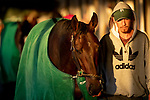 October 30, 2018 : A horse is walked in the shedrow after morning workouts in preparation for the Breeders' Cup at Churchill Downs on October 30, 2018 in Louisville, Kentucky. Carolyn Simancik/Eclipse Sportswire/CSM