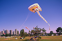 Vancouver, BC, British Columbia, Canada - Kite Flying at Vanier Park, Summer