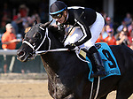 LOUISVILLE, KY - SEP 16: The Tabulator (Jose Valdivia Jr.) wins the 36th running of the G3 Iroquois Stakes. Owner Carolyn Wilson, trainer Larry Rivelli. By Dialed In x Fly to the Stars (Giant's Causway) (Photo by Mary M. Meek/Eclipse Sportswire/Getty Images)