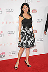 Lisa Edelstein at The 2009 AFI Fest Screening of Precious held at The Grauman's Chinese Theatre in Hollywood, California on November 01,2009                                                                   Copyright 2009 DVS / RockinExposures
