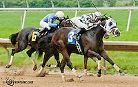Burning Mandate winning at Delaware Park on 6/10/13