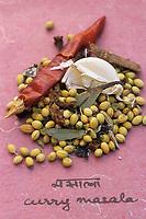 Asie/Inde/Maharashtra/Bombay : Les épices dans la cuisine indienne - Curry marsala, mélange d'épices à broyer