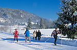 Austria, Tyrol, Kaiserwinkl: Winter Scenery, winter hiking-trail and cross-country ski run near Walchsee at Zahmer Kaiser Mountain