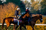 October 31, 2020: Front Run The Fed, trained by trainer Chad C. Brown, exercises in preparation for the Breeders' Cup Turf Sprint at Keeneland Racetrack in Lexington, Kentucky on October 31, 2020. Scott Serio/Eclipse Sportswire/Breeders Cup/CSM