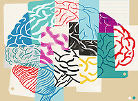 Lots of different pieces of paper forming human brain ExclusiveImage