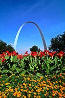 Famous St Louis Arch Archway Park St Louis Missouri