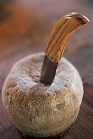 Europe/France/Corse/2A/Corse-du-Sud/Cuttoli-Corticchiato: Couteau corse fabriqué par Jean Biancucci Coutelier et fromage de brebis corse